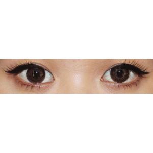 Gothic 3 Tone Brown