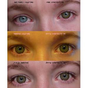Venus Eye Brown