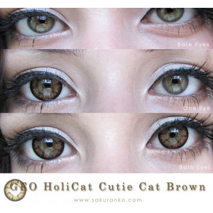 Geo HoliCat Cutie Cat Brown