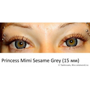 Princess Mimi Sesame Grey (Tsubasa Bambi series)