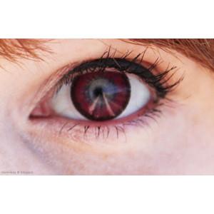 Venus Eye Wine Red