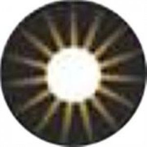 Cosplay The Sun